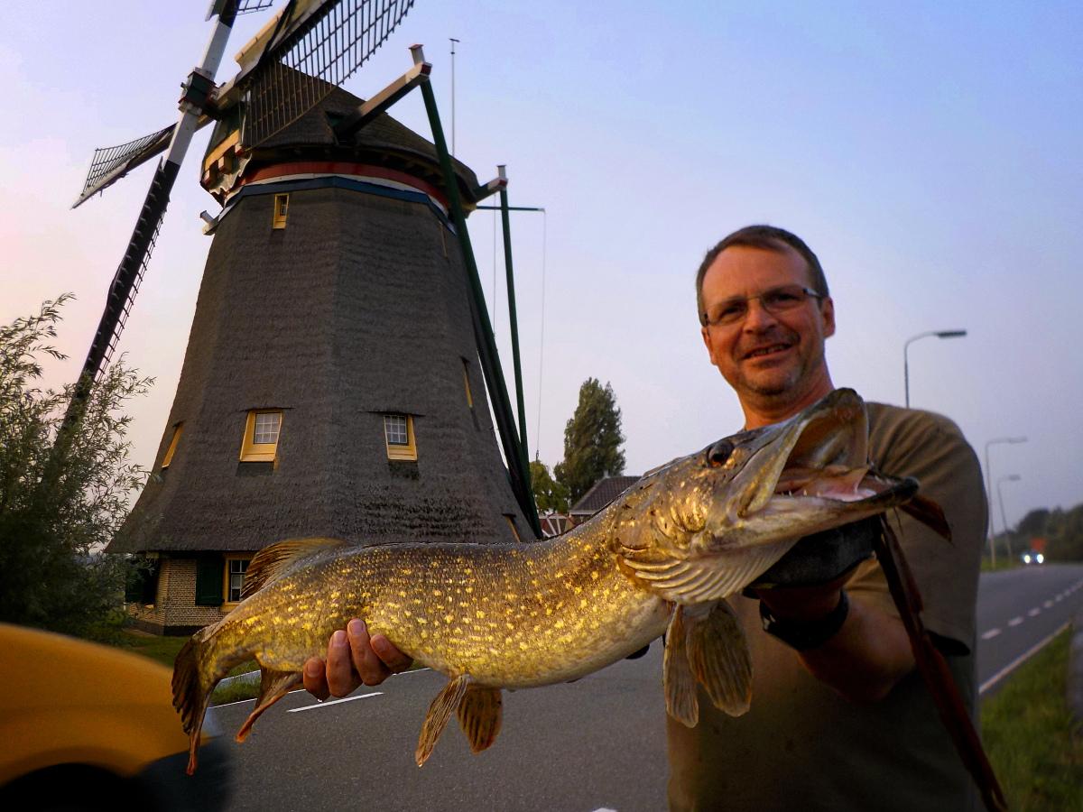 Manu Bizel, guide de pêche en Hollande