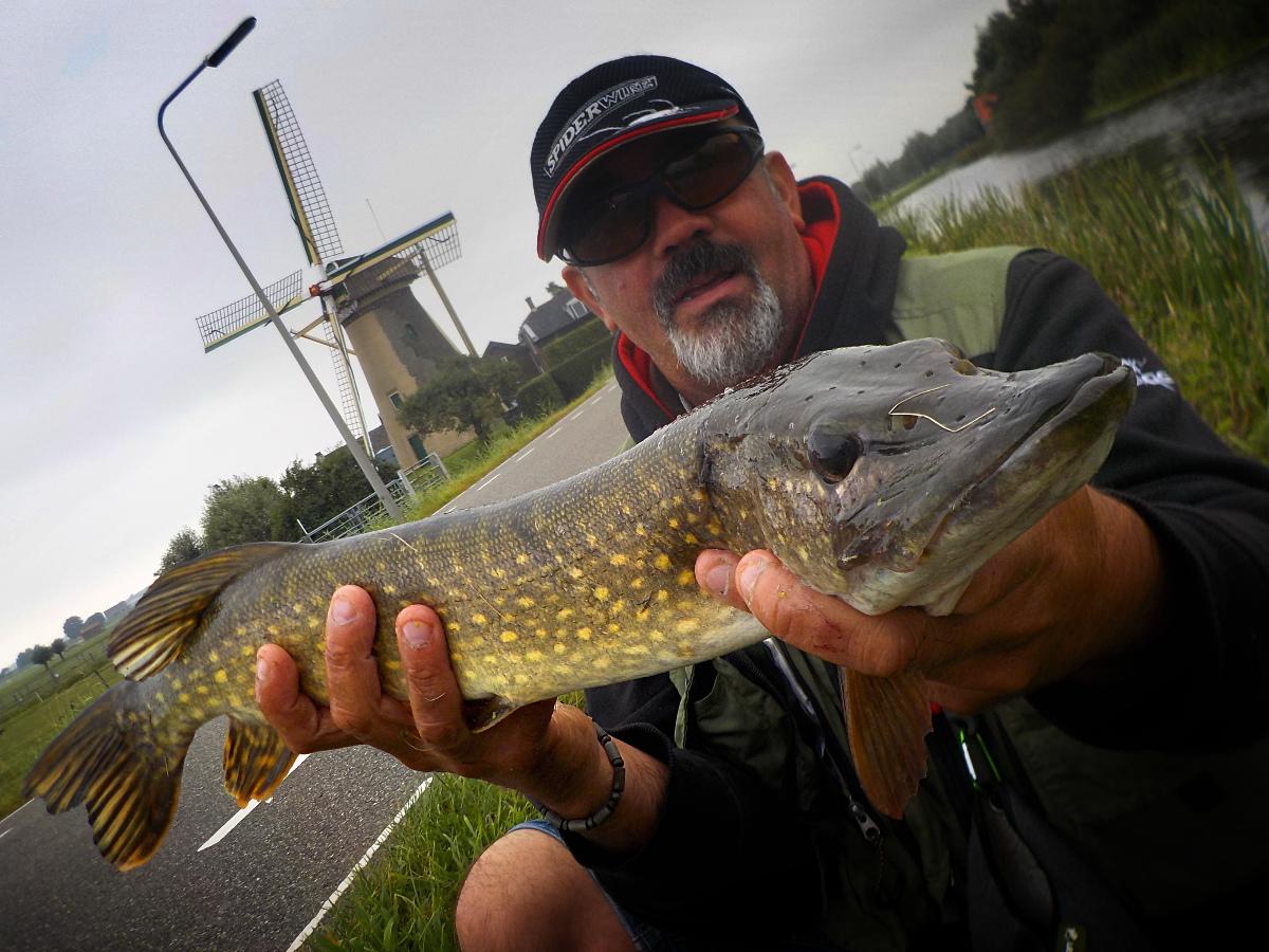 Séjour de pêche en Hollande méridionale