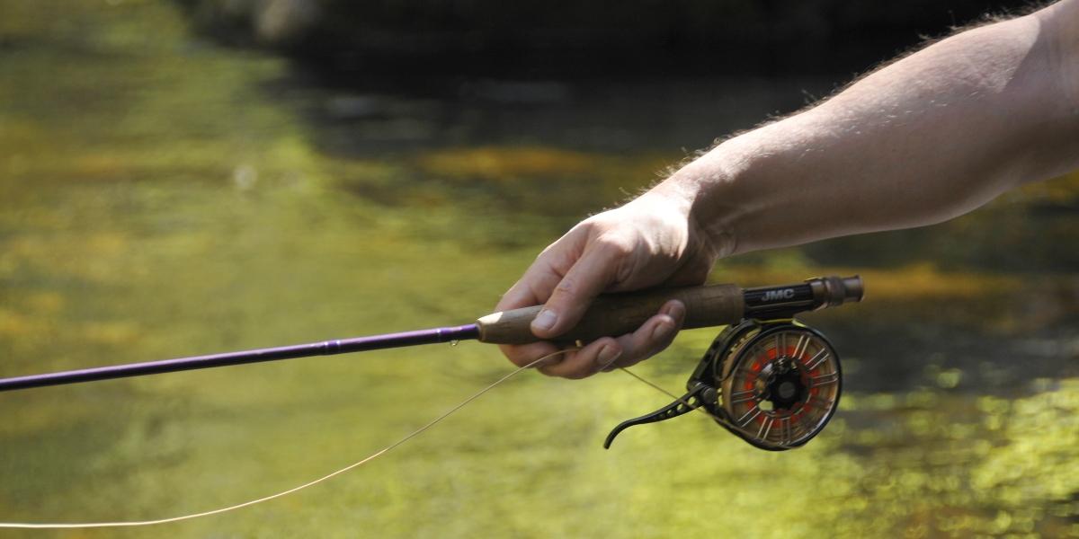 Stage de pêche à la mouche