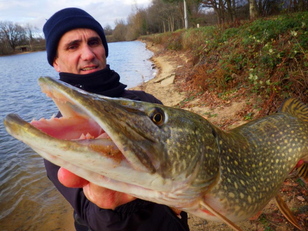 Guide de pêche au brochet