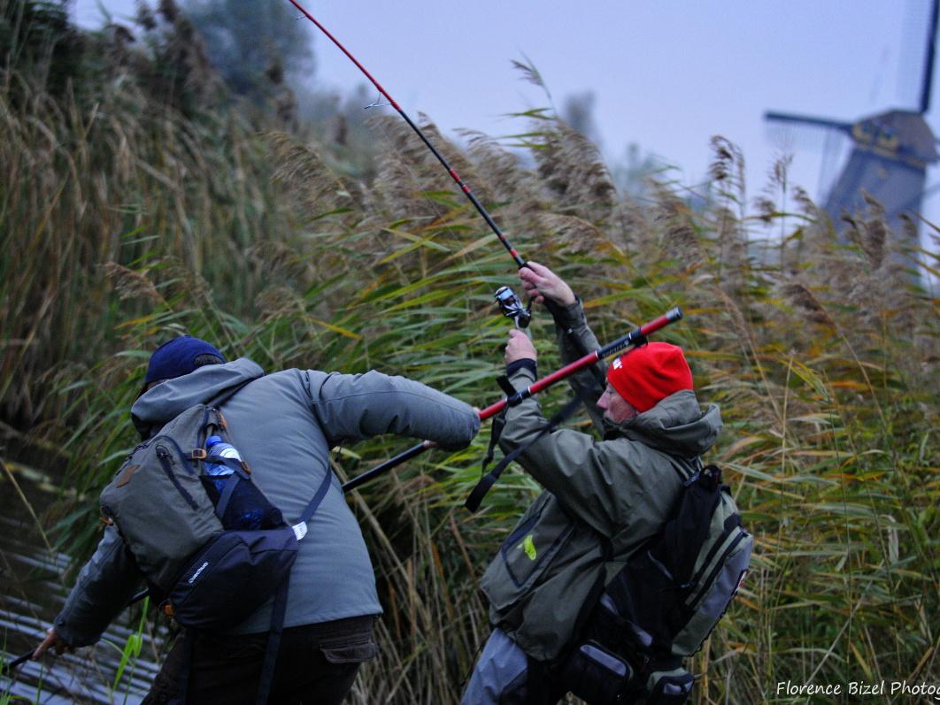 Pêche dans les polders