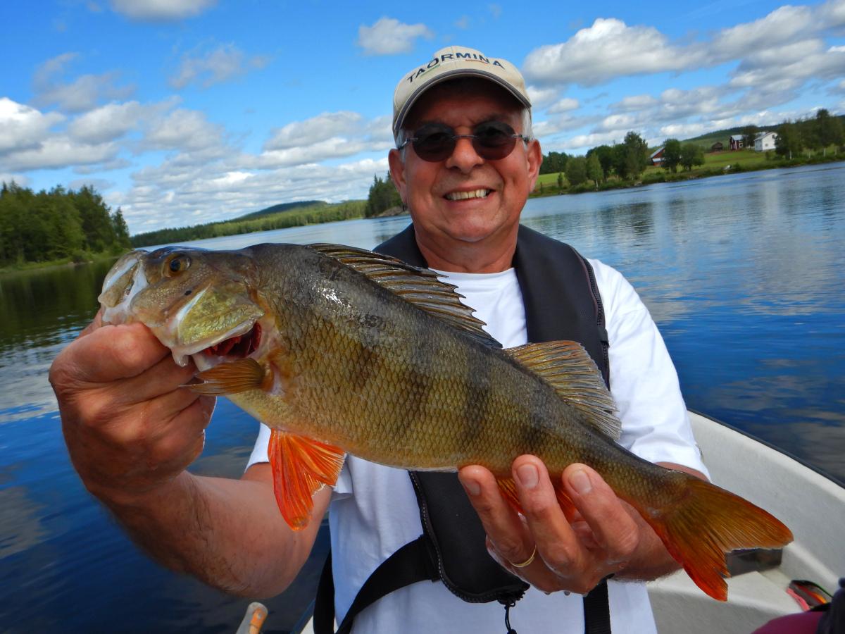 Séjour de pêche en Laponie