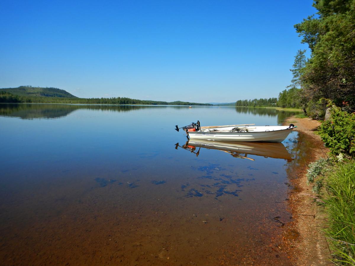 Séjour de pêche en Suède au brochet