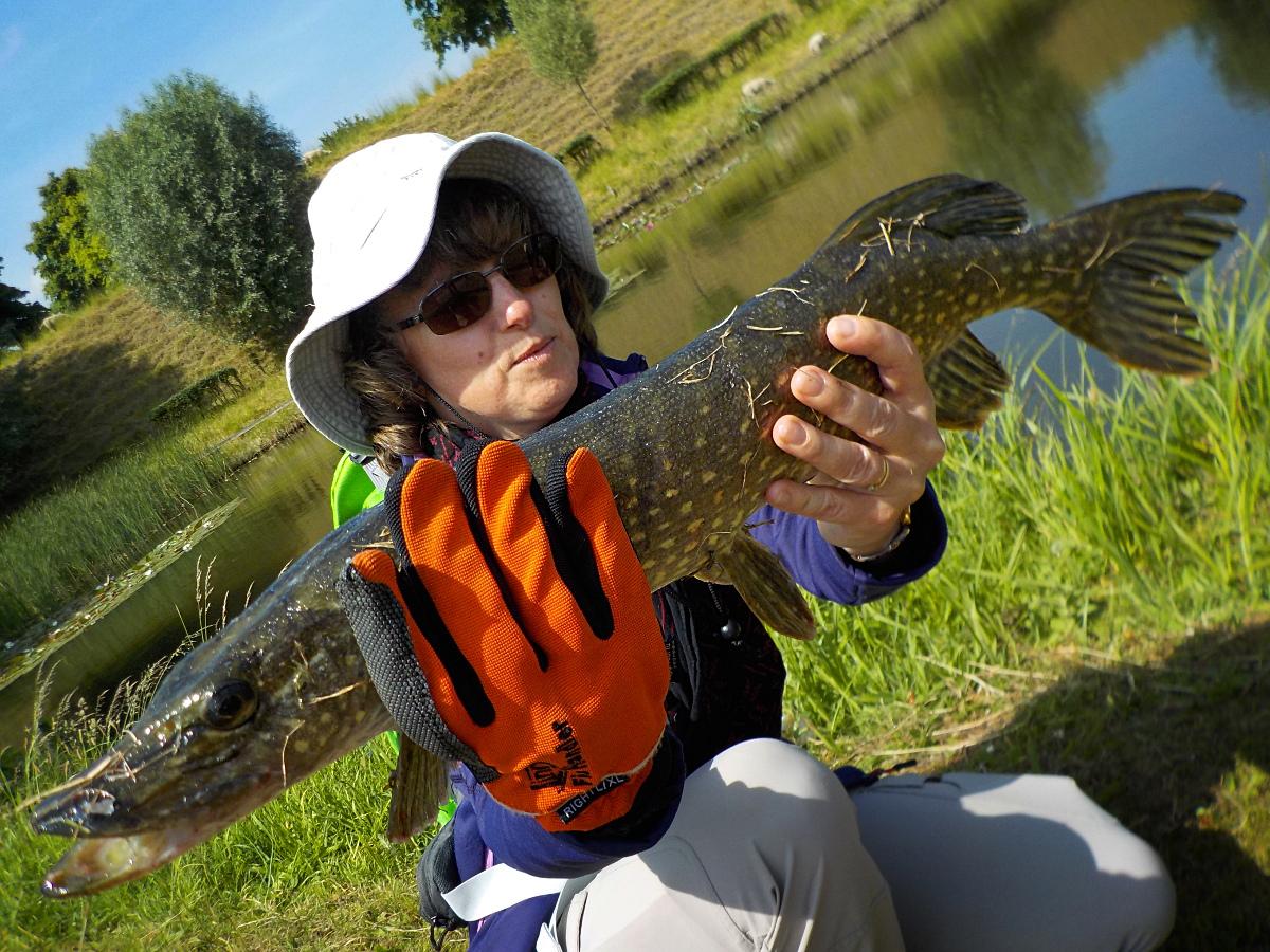Séjour de pêche ne Hollande méridionale