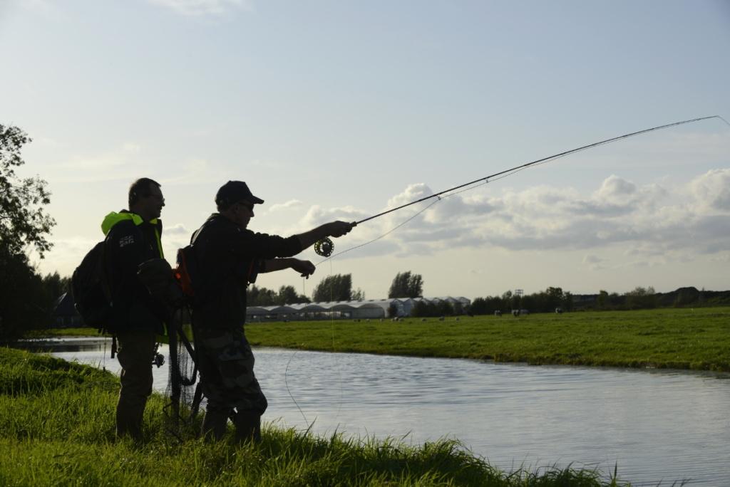 Pêche du brochet à la mouche en Hollande