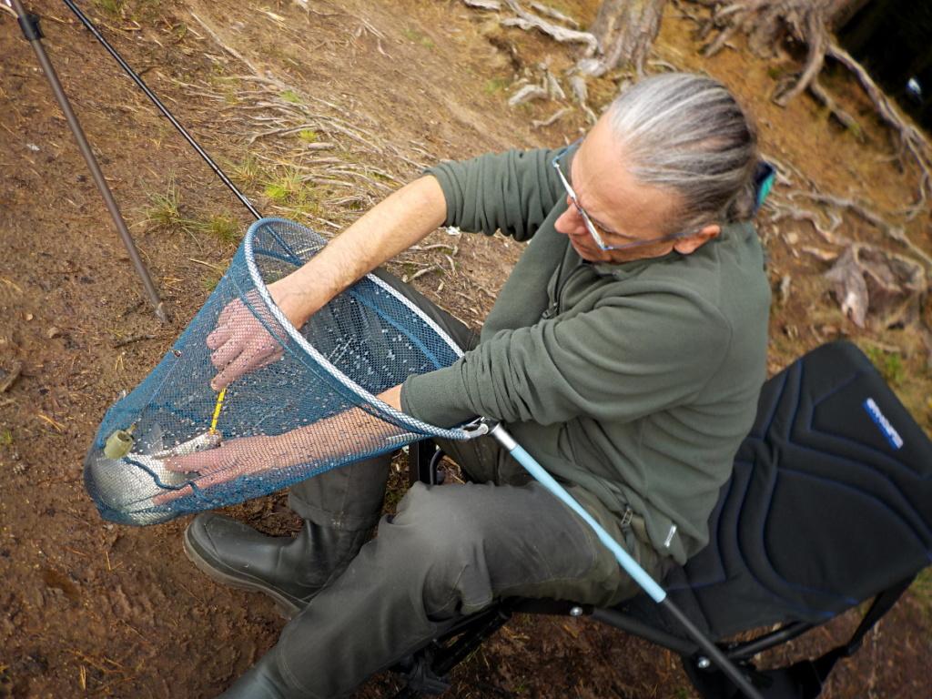 Stage de pêche au feeder en plan d'eau