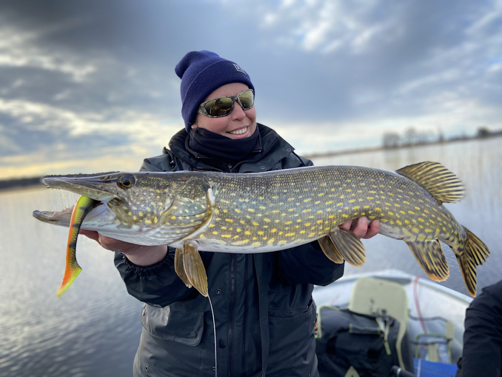 Séjour de pêche au brochet en Suède